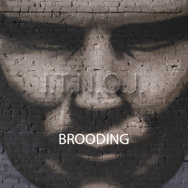 image for Brooding