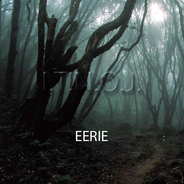image for Eerie
