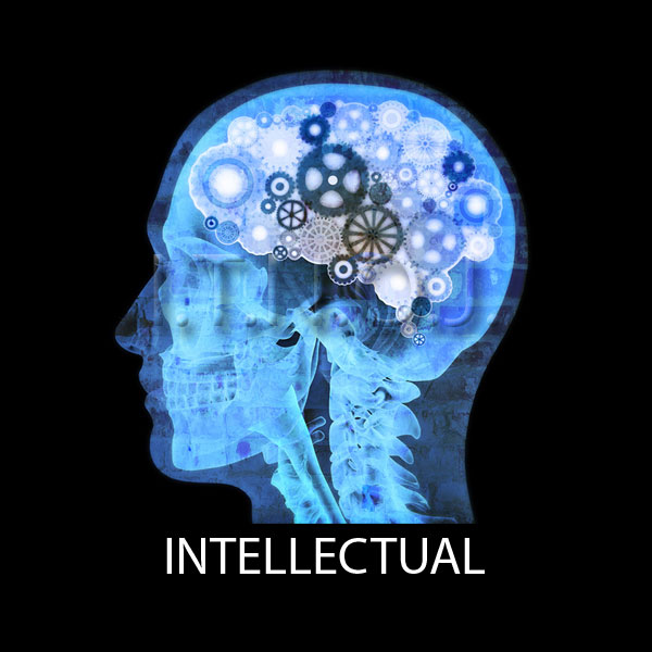 image for Intellectual