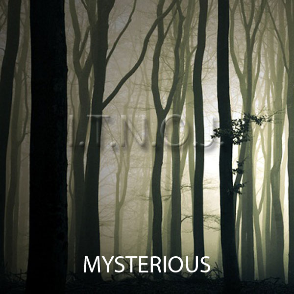image for Mysterious
