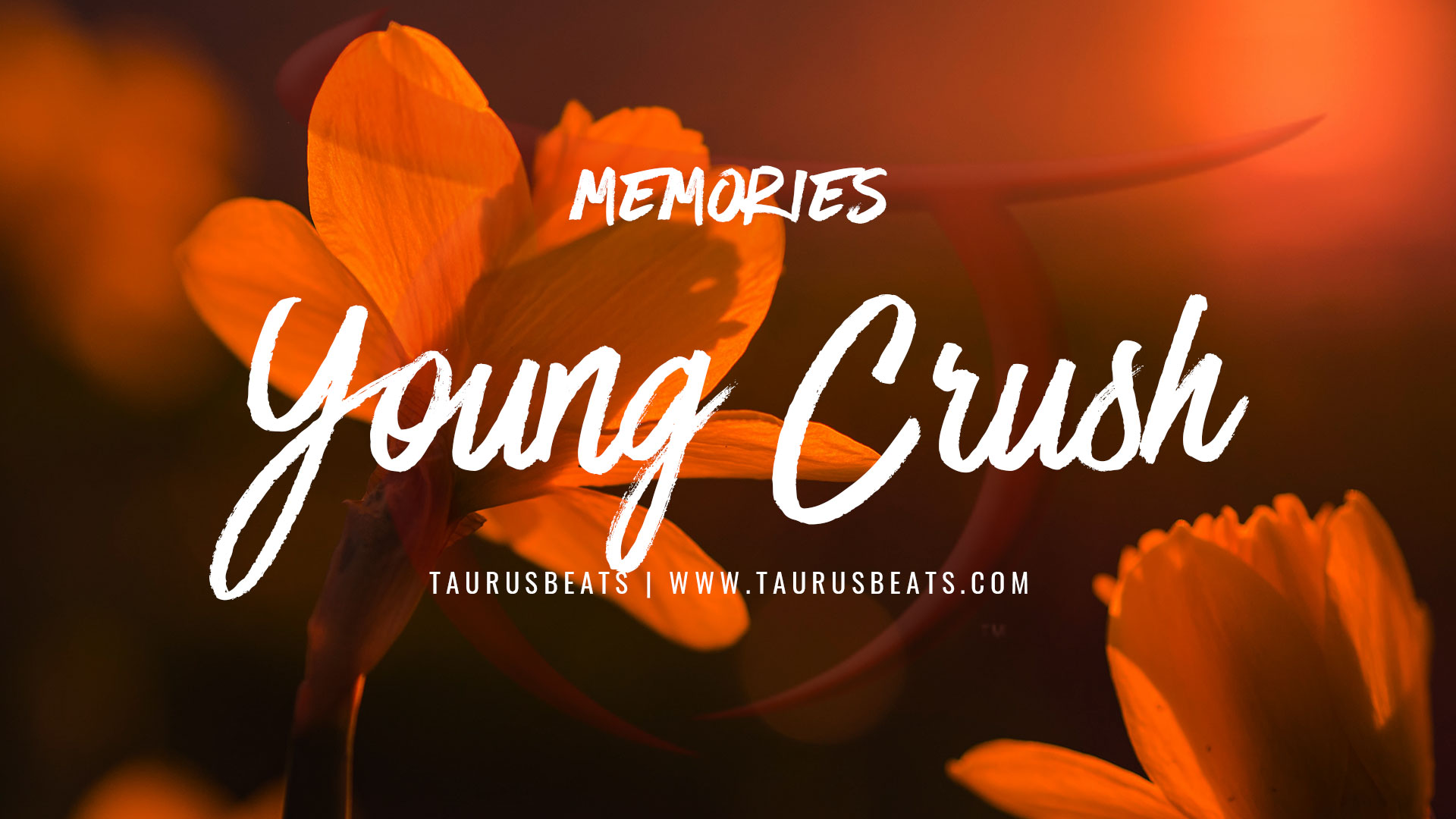 image for Young Crush