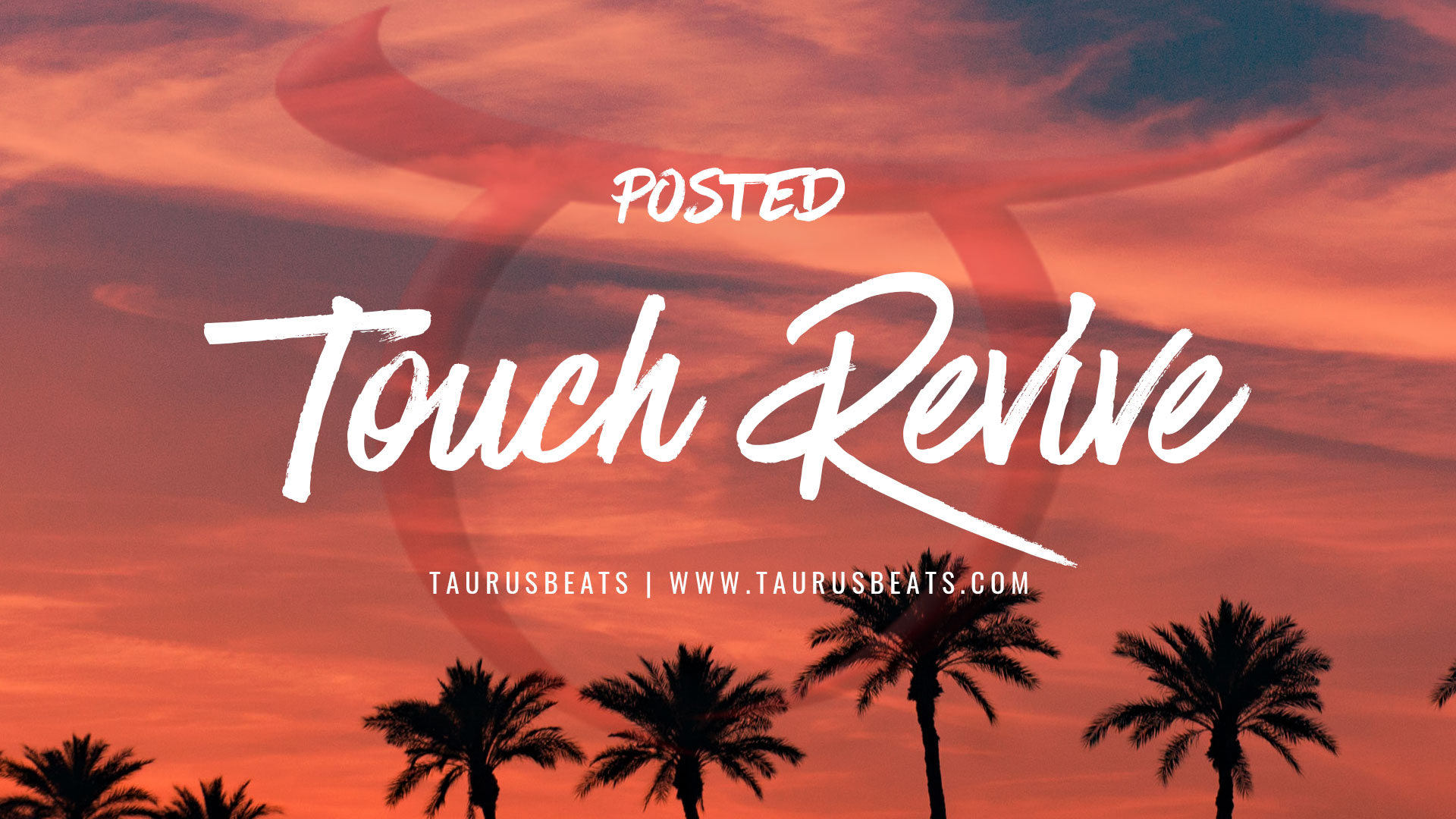image for Touch Revive